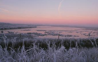 old hall marshes sunrise