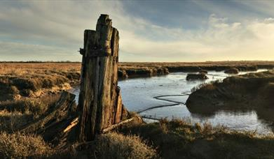 northey island on the essex coast justin minns photography