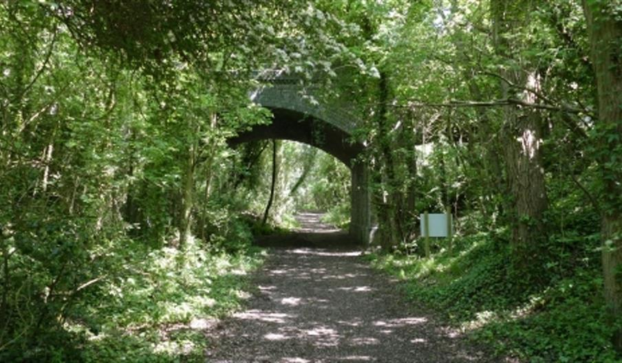 stow-maries-halt-nature-reserve - essex-wildlife-trust
